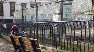 五月山動物園のウォンバットの檻の前で